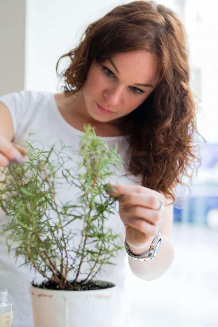 Nachhaltig leben-wie fange ich an?